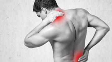 Rückenschmerzen Büro Alltag Training Tipps