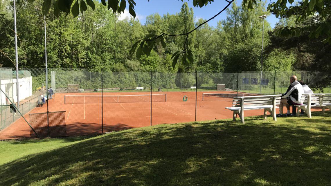 Tennis Club Geroldswil Tennisplätze