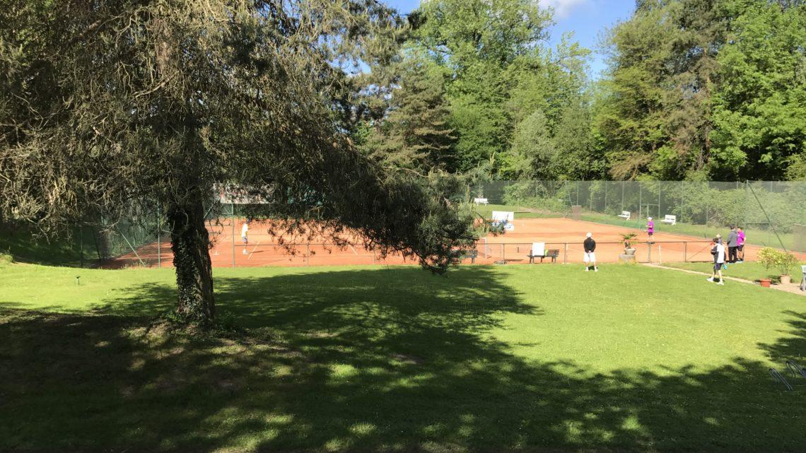 Tennis Club Geroldswil