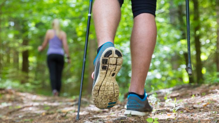Nordic Walking Trend Gesundheit Natur