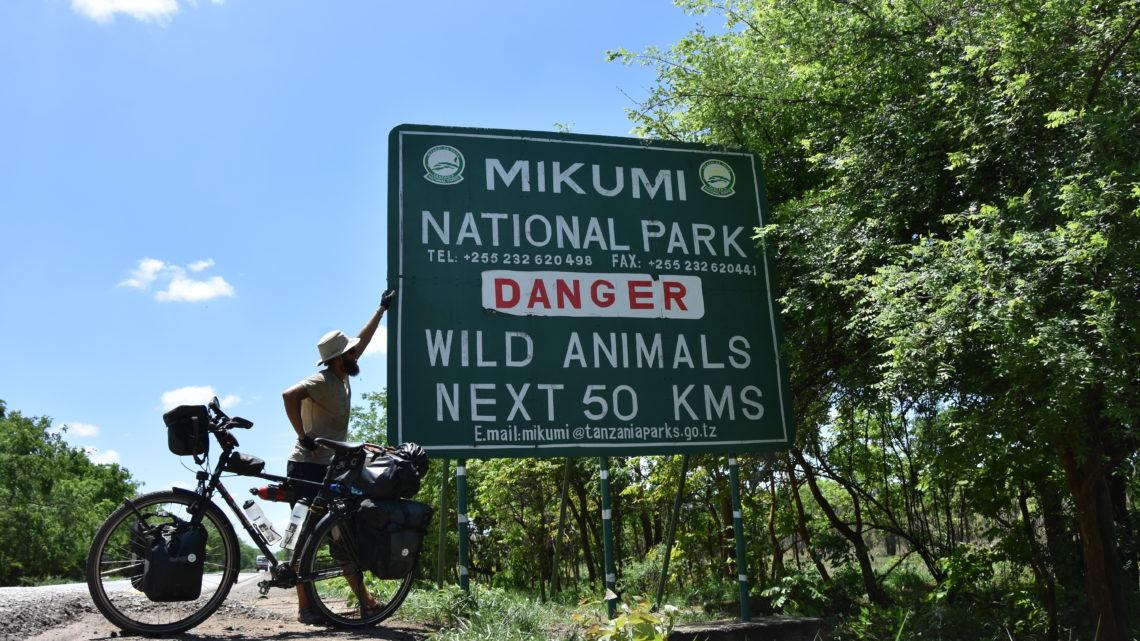 Lukas Steiner Südafrika Mikumi Nationalpark Tanzania trends&style