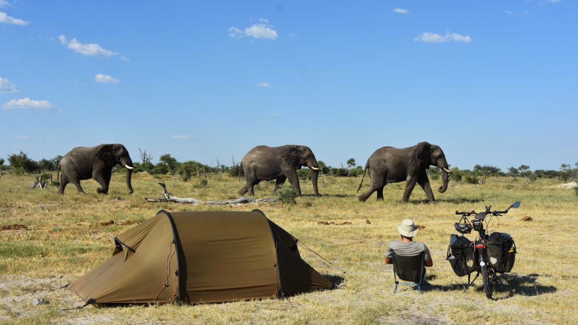 Lukas Steiner Südafrika Elefanten trends&style